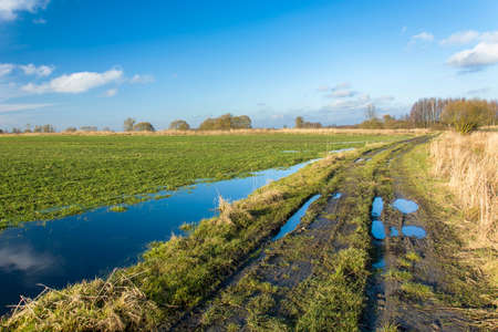 Puddles on a green field and rural road, white clouds on the blue sky, sunny day Banque d'images - 138555315