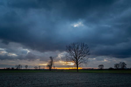 Dark clouds in the sky after sunset, plowed field and leafless trees