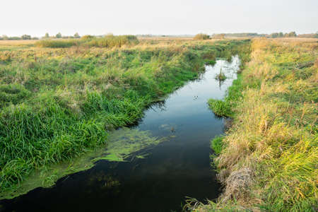 A small river with grasses on the bank, meadows and horizon, autumn view, Uherka, eastern Poland