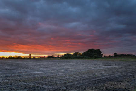 Plowed field, trees on the horizon and colorful evening clouds, September rural view