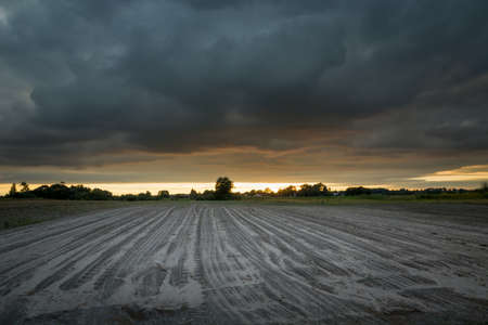Dark storm clouds over the sown field, summer view