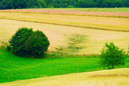 Rural landscape in southern Poland. Stock Photo