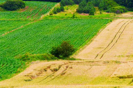 protection of arable land: Rural landscape in southern Poland. Stock Photo