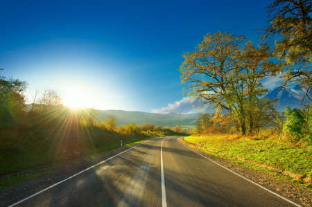 Asphalt road through the forest . A series of pictures of autumn road Foto de archivo