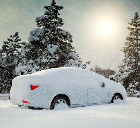 car covered with snow in the forest Stockfoto