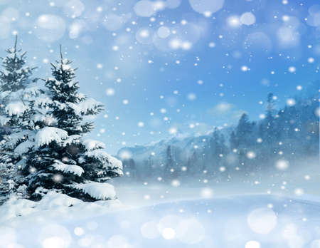 wintery day: snowy forest, morning with falling snow Stock Photo