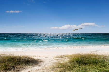 duna: arena mar sol y la relajación