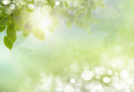 Eco aard  groene en blauwe abstract defocused achtergrond met zon