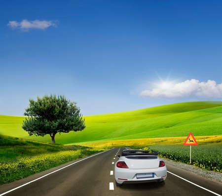 voiture blanche, décapotable sur une route goudronnée entre les champs