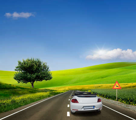 White car, convertible on a paved road between fields