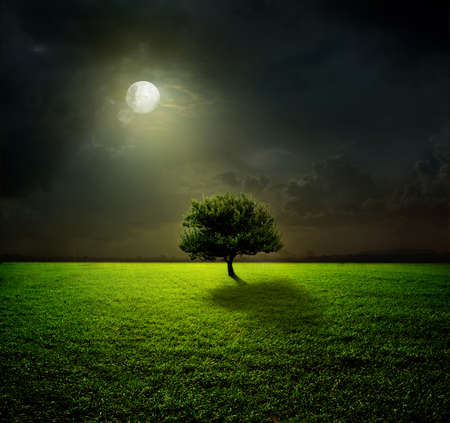 Night and the moon on a green field Stock Photo