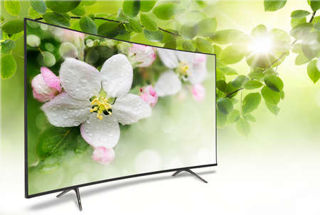 flat screen tv: 4k monitor isolated on white. Isometric view.  TV panoramic on the background of a spring-like view of green foliage with a bright sun. On the screen a branch of apple blossoms Stock Photo