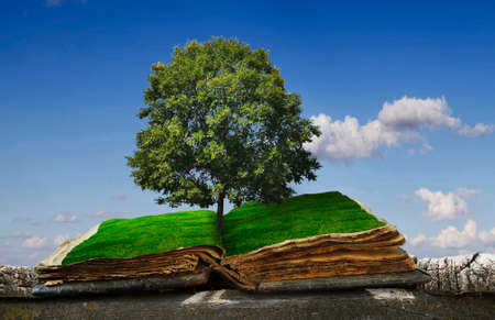 Old, open book on wooden logs, against the sky with grass on the pages and a tree. An open book for brilliant, conceptual ideas