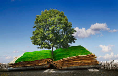 Old, open book on wooden logs, against the sky with grass on the pages