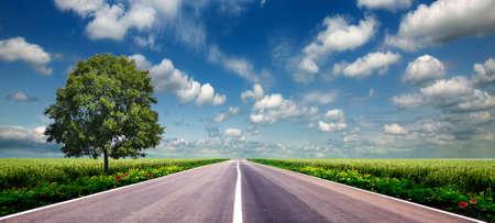 zielone pole i droga nad błękitnym niebem