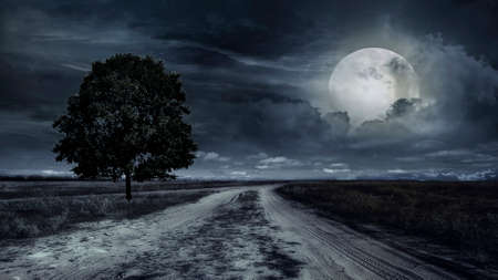 utwardzona droga przez pole pszenicy w nocy. Burza
