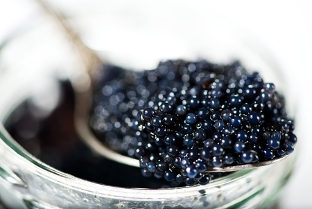 sturgeon: Black caviar in the spoon
