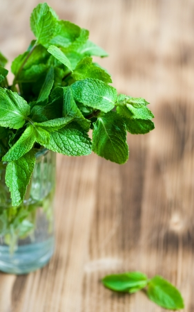 Mint leaves in the glass