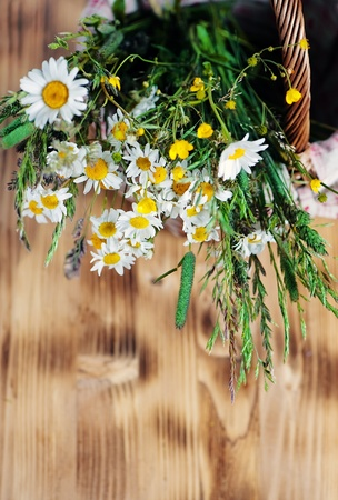 Herbs and camomile in the basket Stock Photo - 14227896