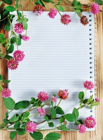Open notebook and clover  photo