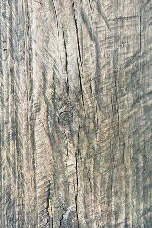 Background and of old wood texture Stock Photo - 14893370