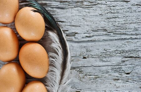 Eggs and feather on the old wood Stock Photo - 14893414