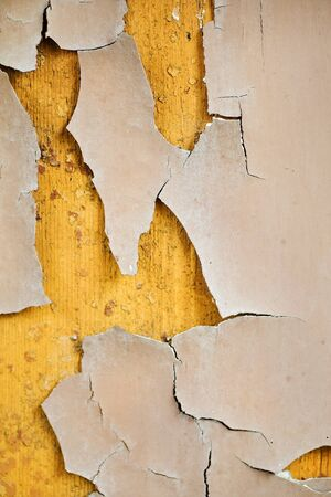 Old crack paint on the wood background Stock Photo - 15803799
