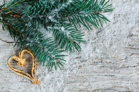 Christmas background with fir branch  photo