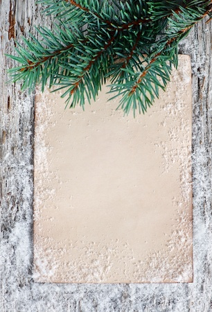 Christmas congratulation card with fir branch  photo