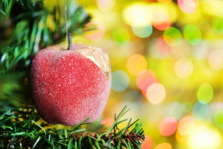 Christmas ball with fir tree branch on the shine background photo