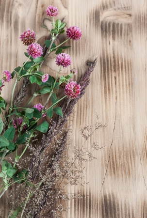 Clover and herbs on the wooden background photo