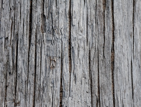 Background and traces of old wood texture Stock Photo - 19405548