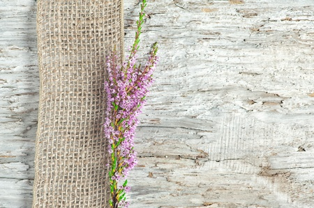 shabby chic: Old rough wooden background with heather and sacking ribbon