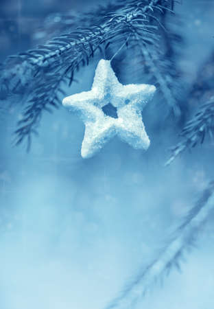Blue christmas decoration star on the fir branch Stock Photo - 22693821