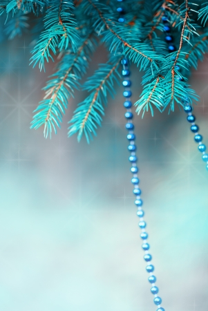 Blue christmas decoration bead on the fir branch photo
