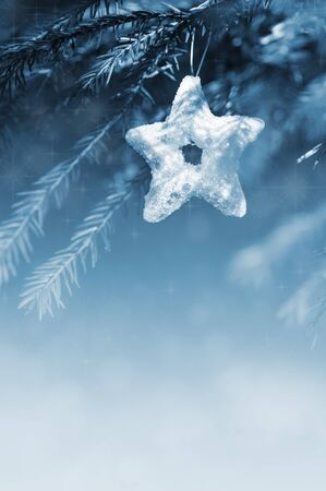 Blue christmas decoration star on the fir branch Stock Photo - 23043482