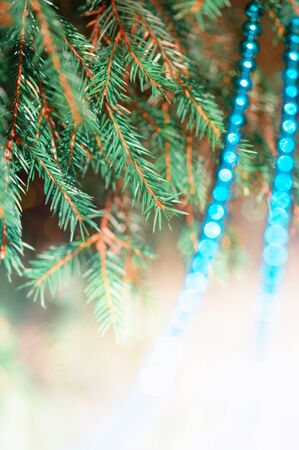 Bright christmas decoration bead on the fir branch photo