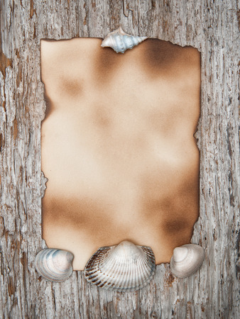 Aged paper and seashells on the old wooden  photo
