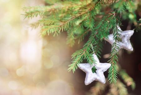 hristmas: Сhristmas decoration star on the fir branch Stock Photo