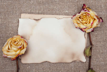 Dry roses and aged paper on the burlap textile Stock Photo - 27484890