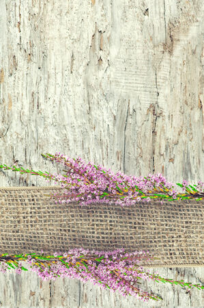 Old rough wooden background with heather and sacking ribbon photo