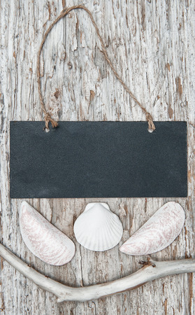 Chalkboard with dry branch and seashells on the old wood background photo