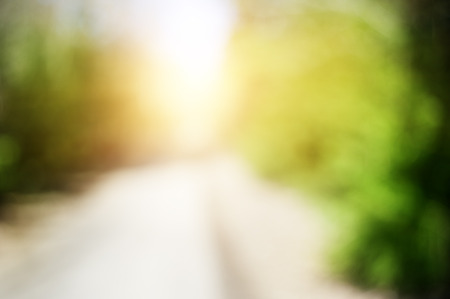 sunlight: Abstract blurred nature background with bright sunlight