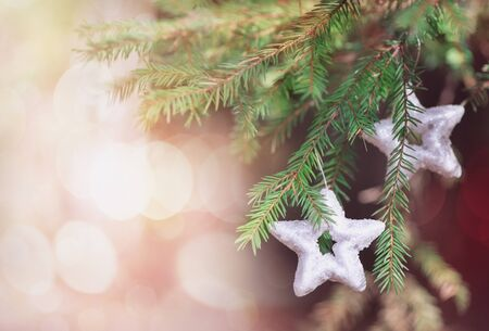 hristmas: Сhristmas decoration star on the fir branch Stock Photo