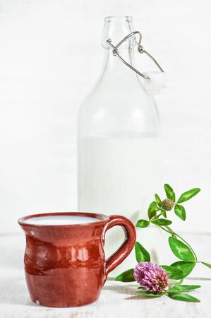 ceramic bottle: Fresh milk in brown ceramic mug, old fashioned bottle and wildflowers
