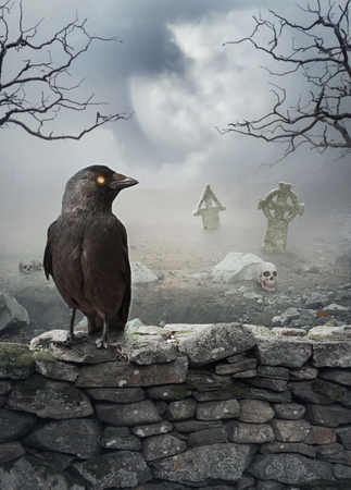 Halloween mystical spooky background with raven on the stone wall Фото со стока