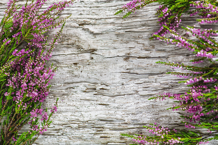 Heather flowers bouquet on the old wood background