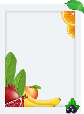 Vector fruits and berries flyer banner card template for design. Vector illustration