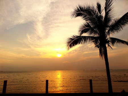 waft: Coconut and sunset