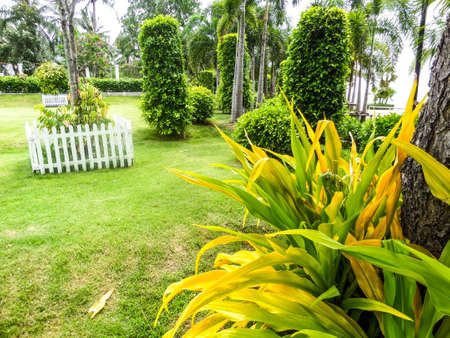 temperament: Garden